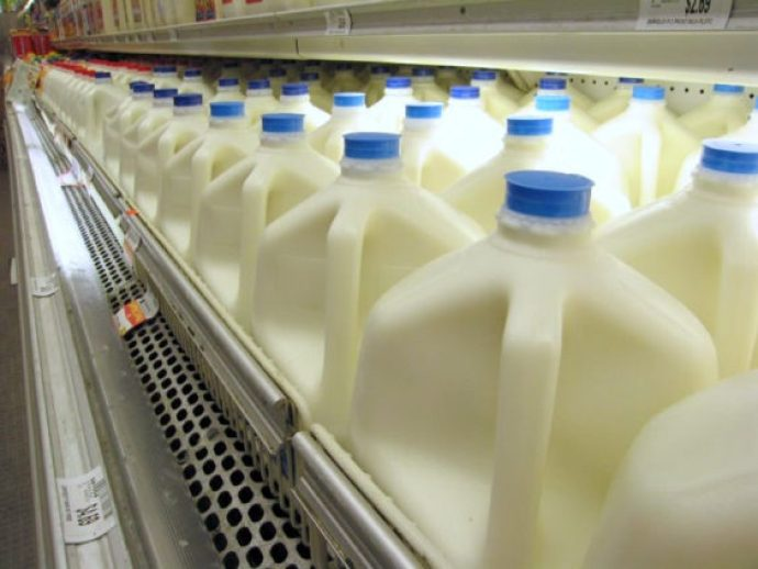 Supermarket milk case