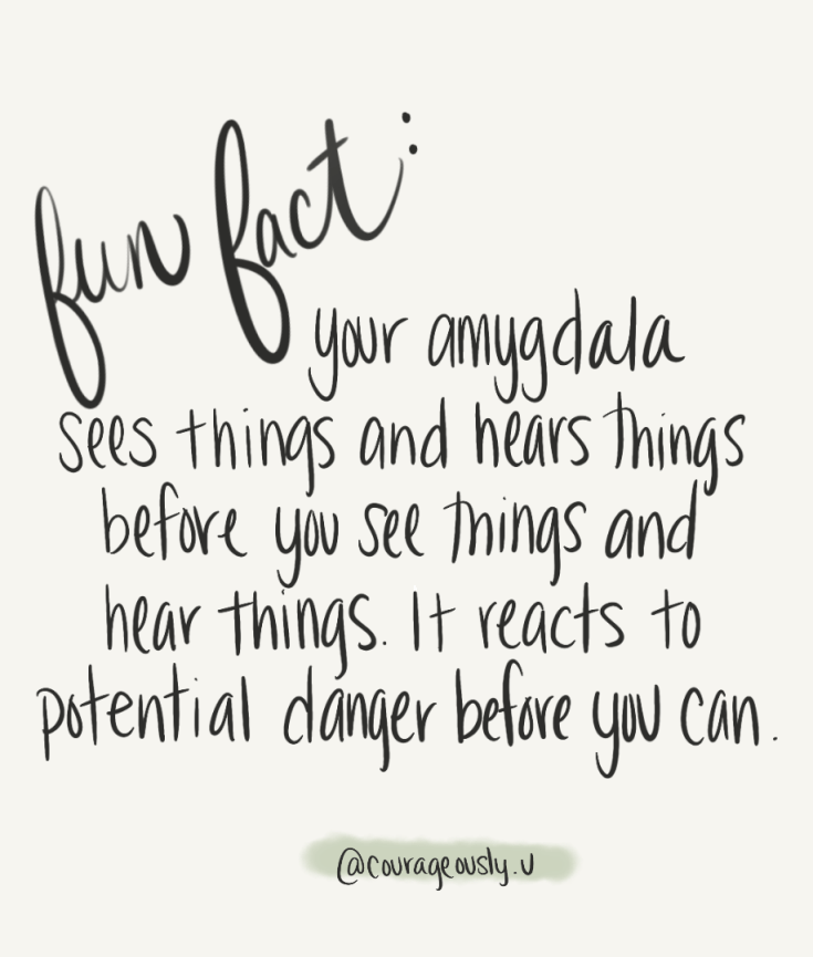 quote about how your amygdala reacts to potential danger before you do