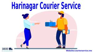 Courier Services in Hari Nagar Delhi