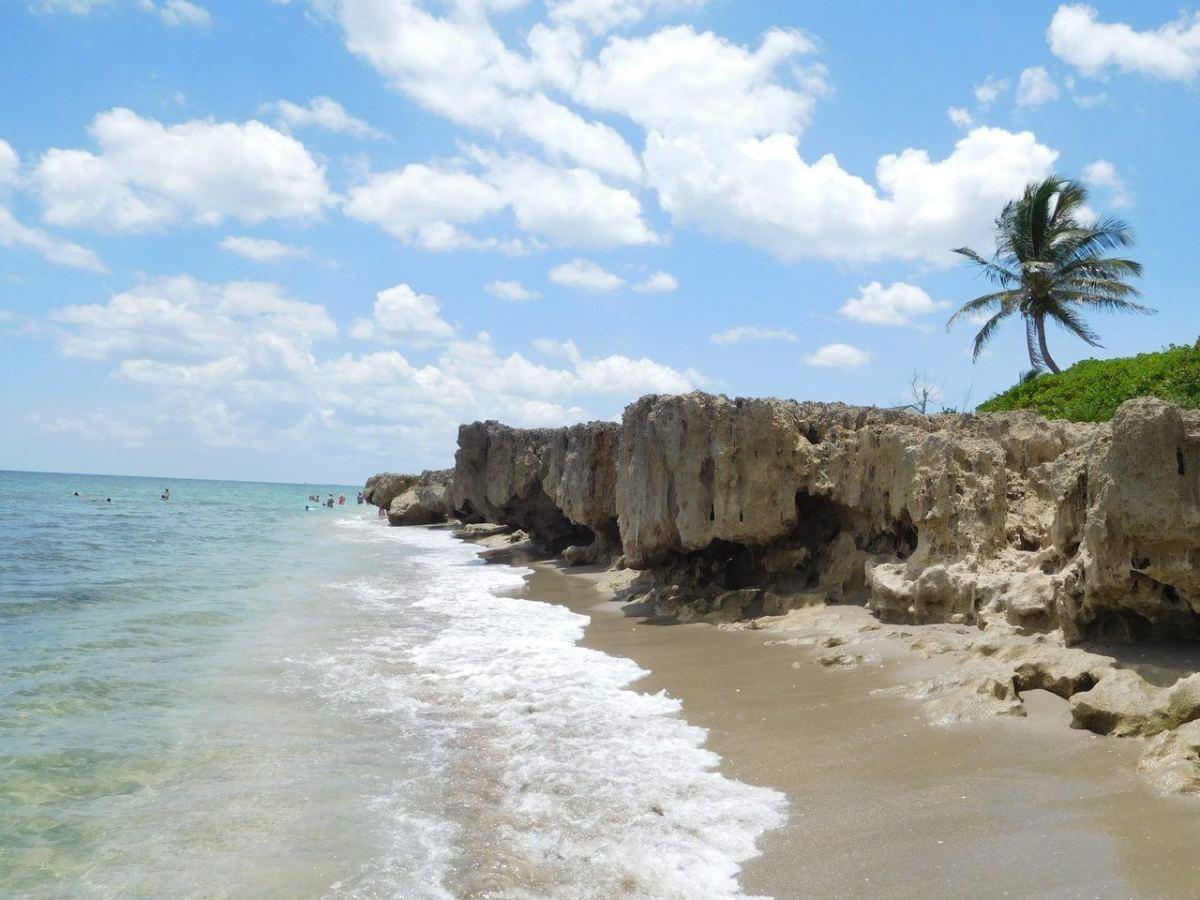 Floride : La marée rouge s'étend à Palm Beach, Miami et à la côte Atlantique