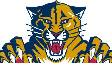 Photo of Les Panthers de Floride sont plus nombreuses qu'on le croit !