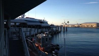 Photo of Key West Express : les Keys par bateau depuis le golfe du Mexique
