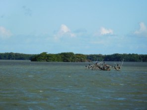 Florida Bay à Flamingo -Everglades national Park)