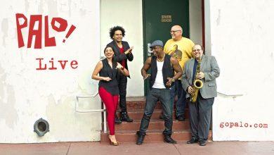 Photo of Palo! : la musique afro-cubaine de Miami !