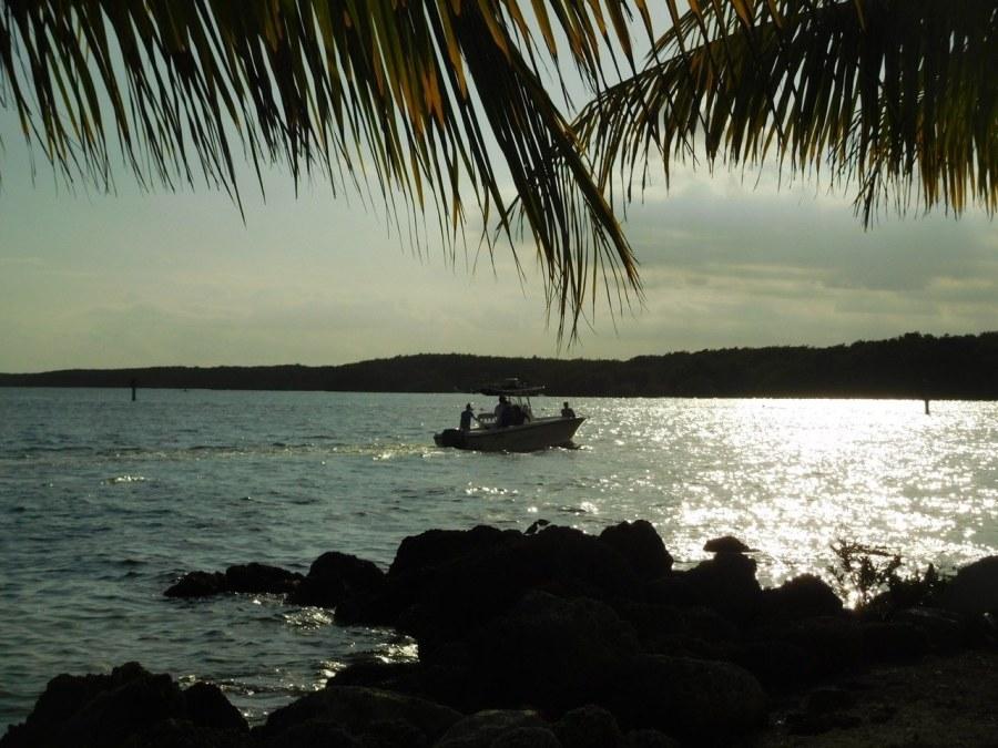 Coucher de Soleil - Plage du Matheson Hammock Park - Coral Gables - Miami - Floride
