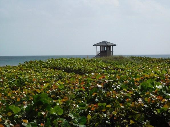 Plage de Delray Beach - Floride