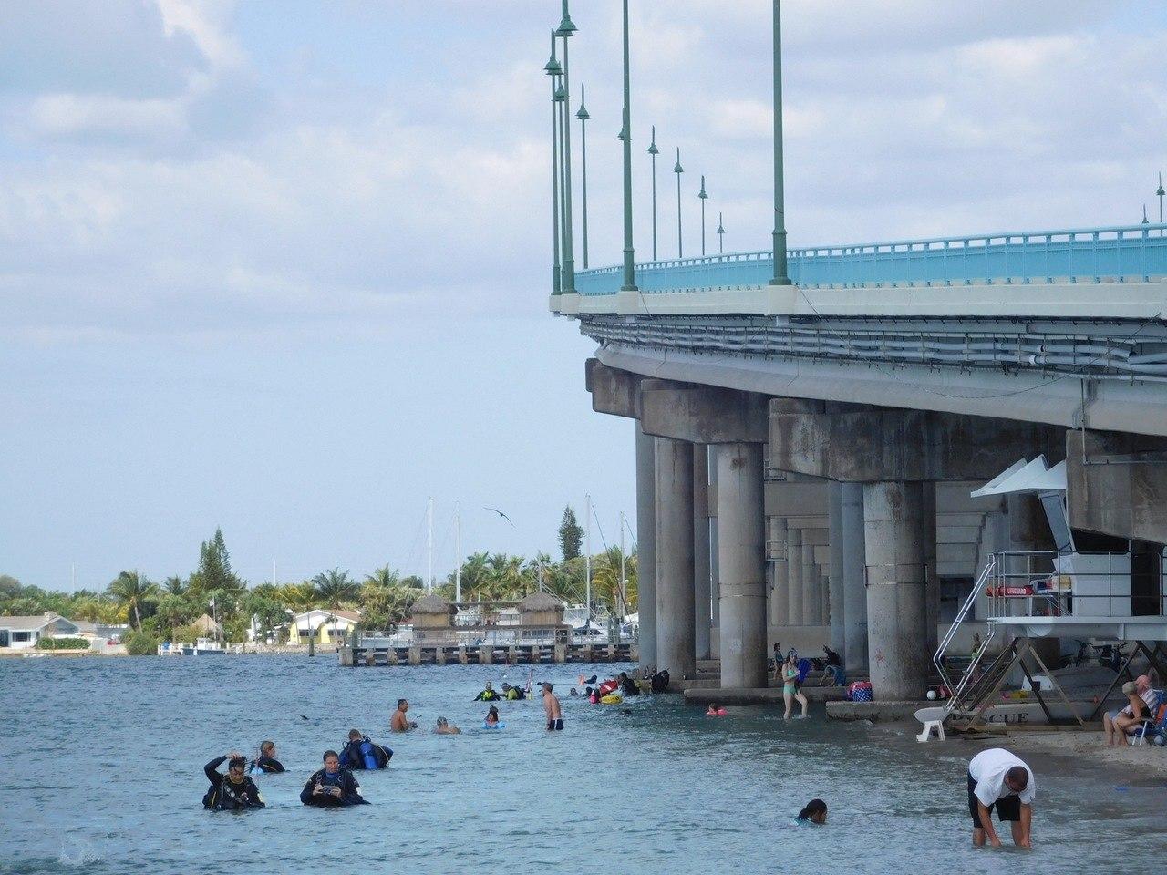 Plongée / snorkeling à Phil Foster Park / Riviera Beach