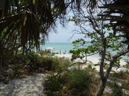 Plage de Delnor-Wiggins Pass State Park à Naples Floride