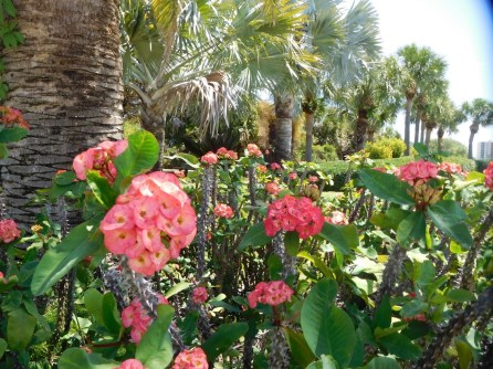 Parc du Phare de Jupiter / Floride