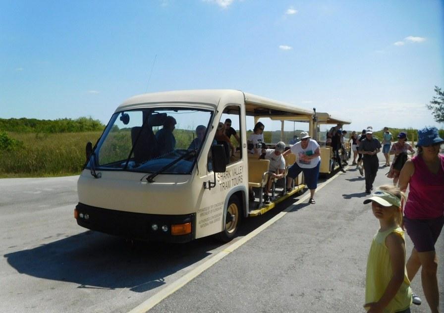 Tram à Shark Valley / Parc National des Everglades