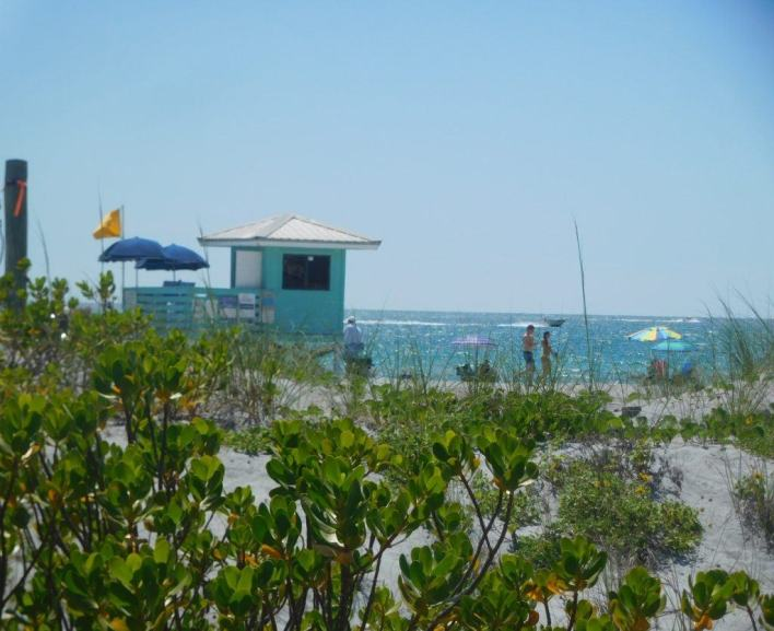Plage de Venice / Floride
