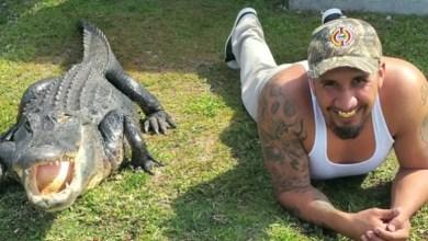 Photo of Joli reportage sur un homme de Miami et son ami alligator