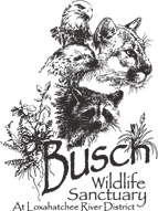 busch-wildlife-sanctuary