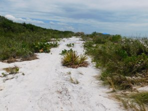 Honeymoon Island, Floride