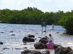 Cannon Beach au John Pennekamp Coral Reef State Park / Key Largo / Floride