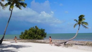Photo of Islamorada : le joyaux des îles Keys de Floride et son standing extraordinaire