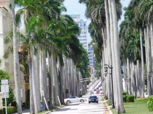 La Royal Palm Way à Palm Beach