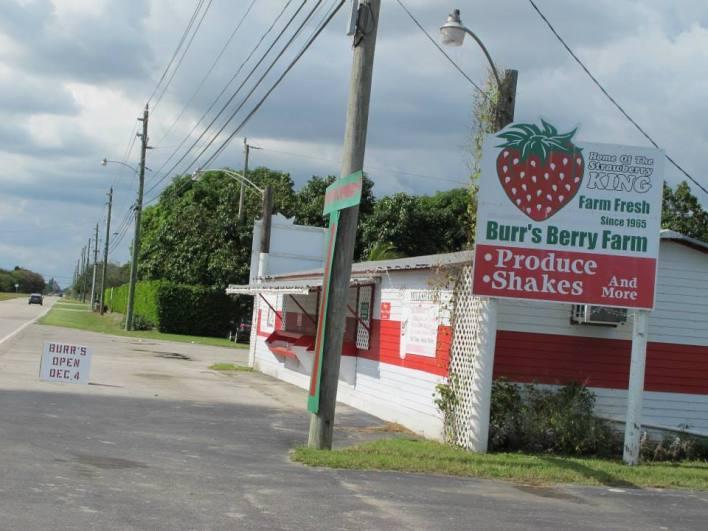 burrs-berry-farm