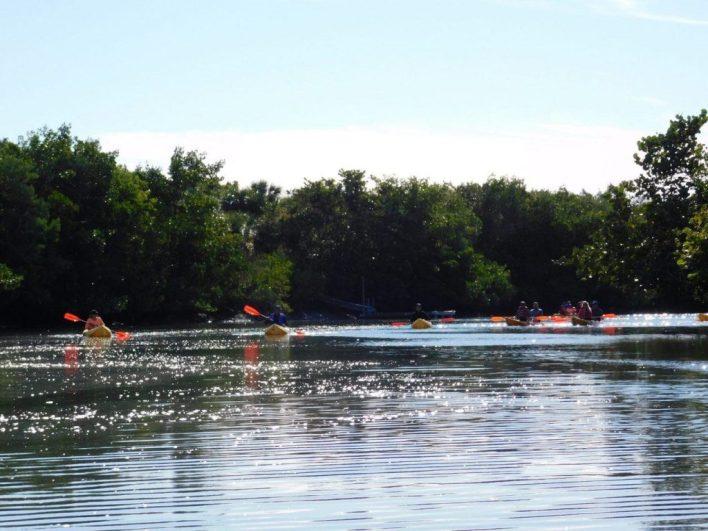 Kayaks / Lovers Key en Floride