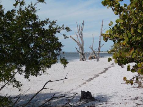 Plage de Lovers Key en Floride