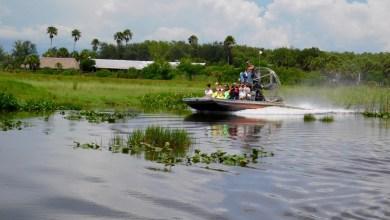 Photo of Everglades : Les meilleurs tours en airboat / visites en hydroglisseur