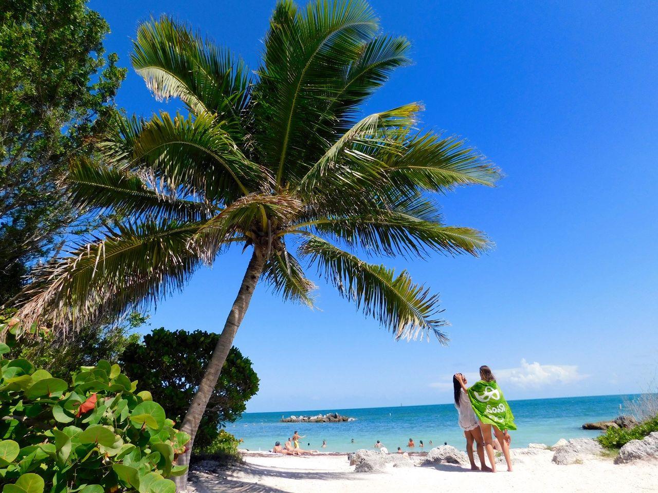 Hôtels pas chers Deerfield Beach: Consultez 3273 avis de voyageurs, photos.