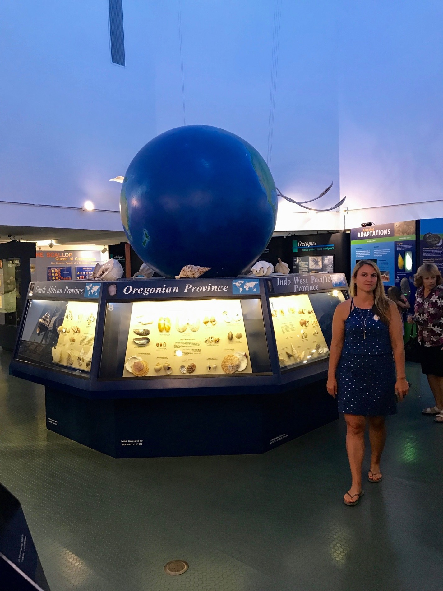 National Shell museum (musée du coquillage) sur l'île de Sanibel Island (Floride)