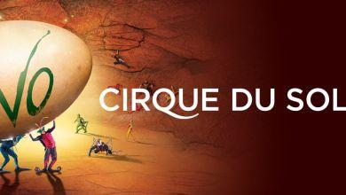 Photo of Le Cirque du Soleil vient présenter «Ovo» à Miami et Sunrise en juillet !