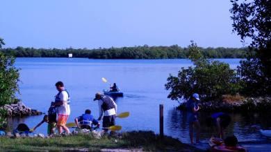 Photo of Rookery Bay : un immense ensemble d'îles et de mangroves entre Naples et Marco Island