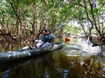 Kayak dans la Rookery Bay (Naples, Florida) avec Rising Tide Explorer