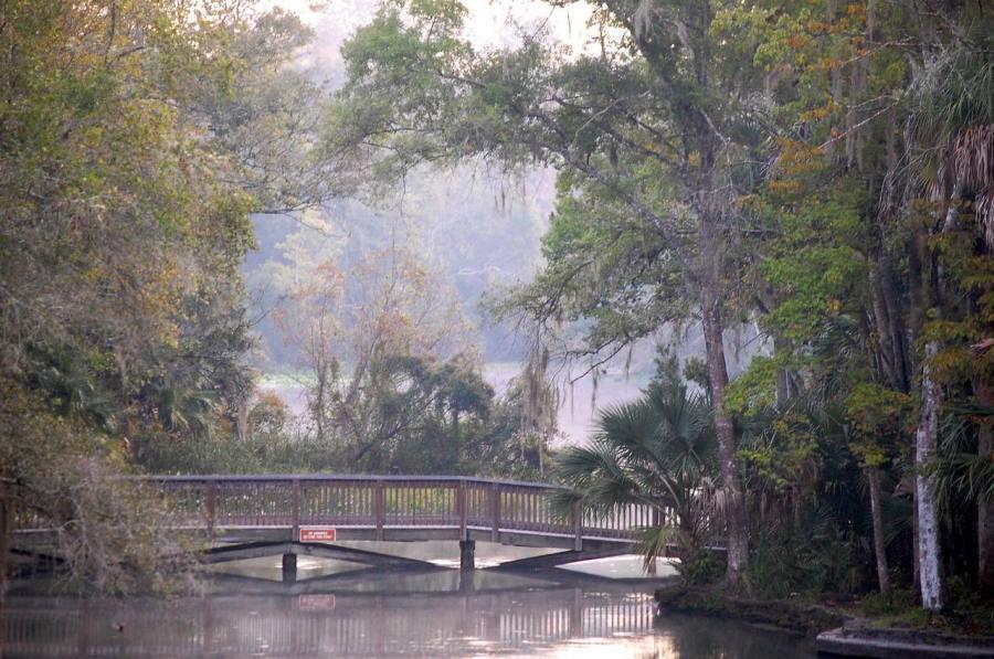 Wekiva Springs, idéal pour le kayak, à Apopka (près d'Orlando)