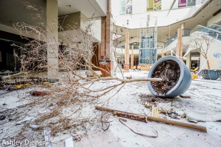 Mall en ruine aux USA