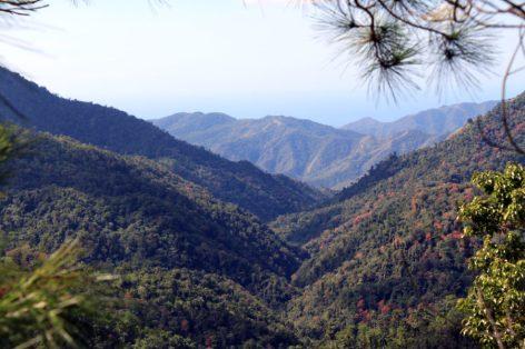 Turquino National Park - Cuba (Crédit photo : anagoria - Wiki Commons)