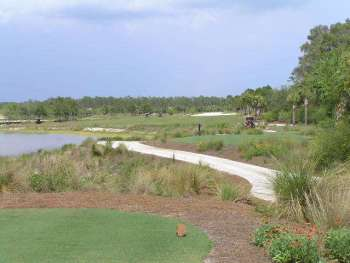 Tiburon Golf Club Floride