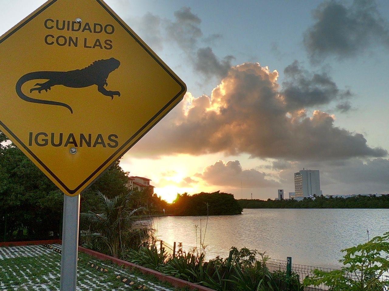 Coucher de soleil à Cancun Mexique