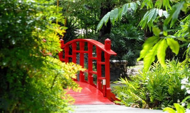 Miami Beach Garden Tour