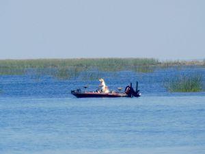 Pêche sur le Lac Okeechobee à Lake Port (en Floride)