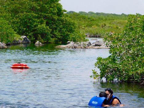 Cenote et lagon Yal Ku à Akumal