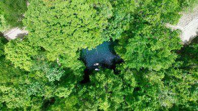 Photo of La Cenote Verde Lucero de Puerto Morelos (près de Cancun au Mexique)