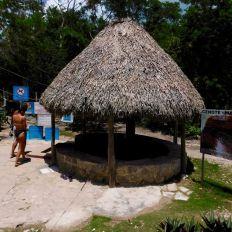La cenote Multum Ha à Cobá.