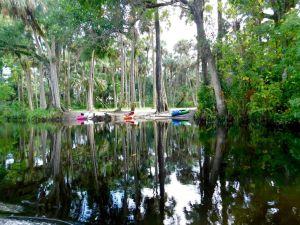 La Loxahatchee River, dans le Riverbend Park de Jupiter (Floride)
