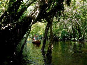 La Loxahatchee River (Floride)