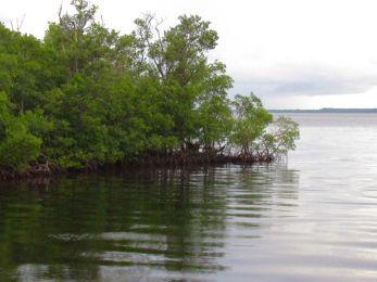 Ponce de Leon Park de Punta Gorda, en FloridePonce de Leon Park de Punta Gorda, en Floride