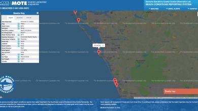 Photo of Red Tide en Floride : Une carte internet donne l'état exact des plages de la côte ouest