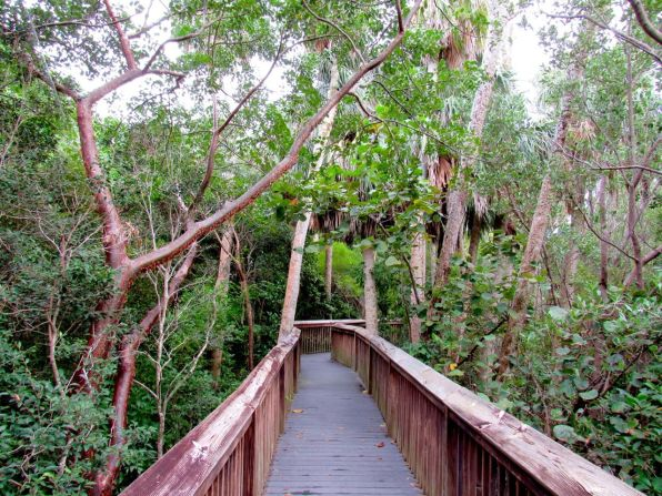 Gumbo Limbo Nature Center à Boca Raton
