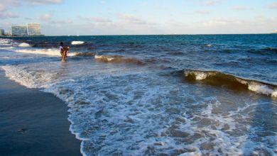 Photo of La marée rouge est toujours fortement présente sur la côte ouest de la Floride