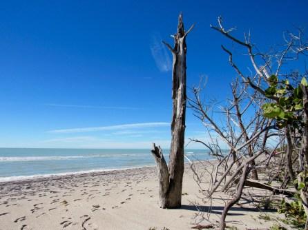 Plage du Stump Pass State Park à Englewood en Floride