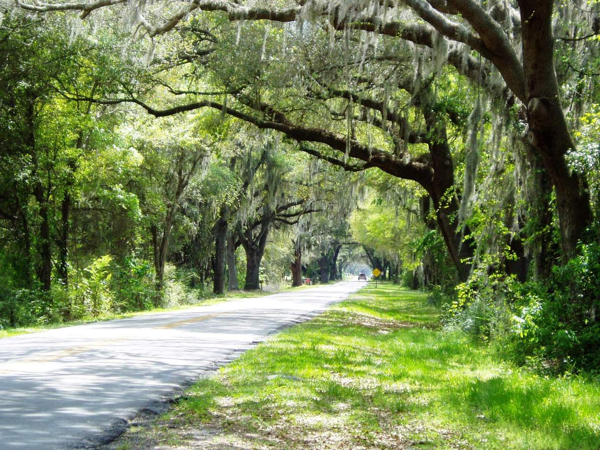 Scenic Sumter Heritage Byway