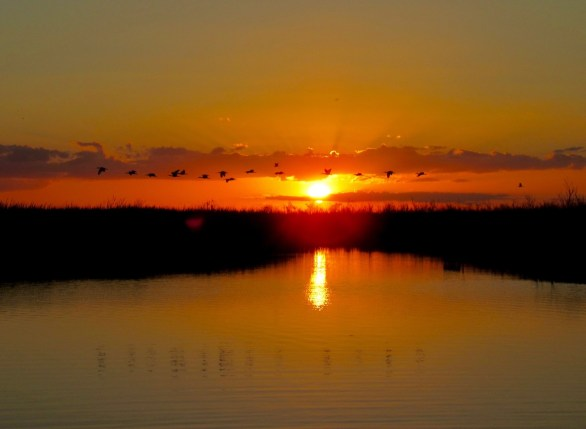 Coucher de soleil sur le Everglades au Loxahatchee National Wildlife Refuge à Boynton Beach en Floride