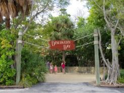 Mangrove au Miami Seaquarium